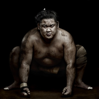 World Press Photo 2013. Sumo